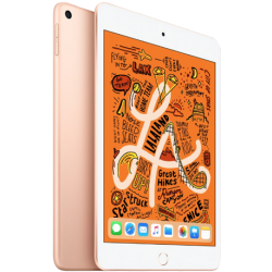 iPad Mini5 7.9 inch Wifi 64GB (Mới 100%)